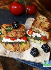 Pesto and Goat Grilled Cheese